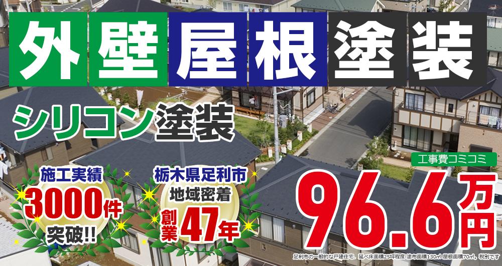 お得な外壁屋根塗装Wパック塗装 966000万円