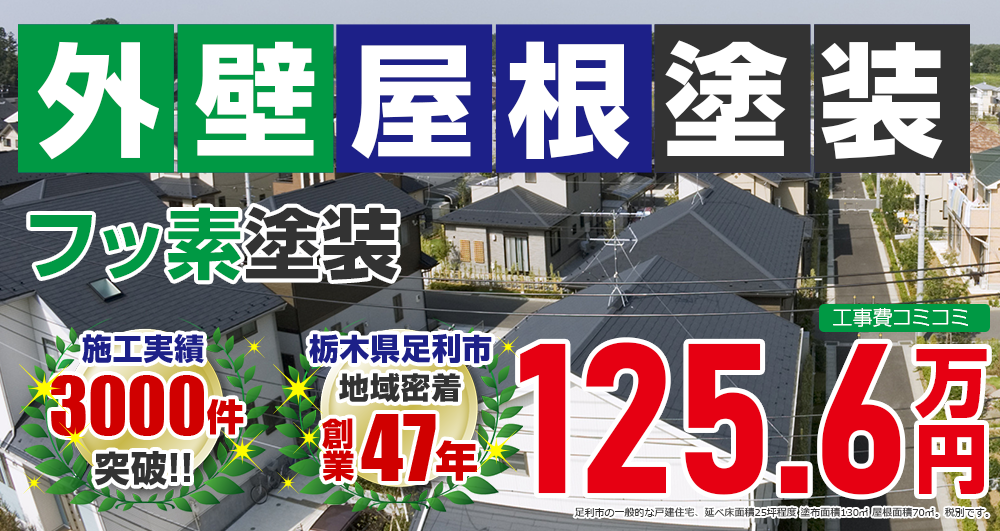 お得な外壁屋根塗装Wパック塗装 1256000万円
