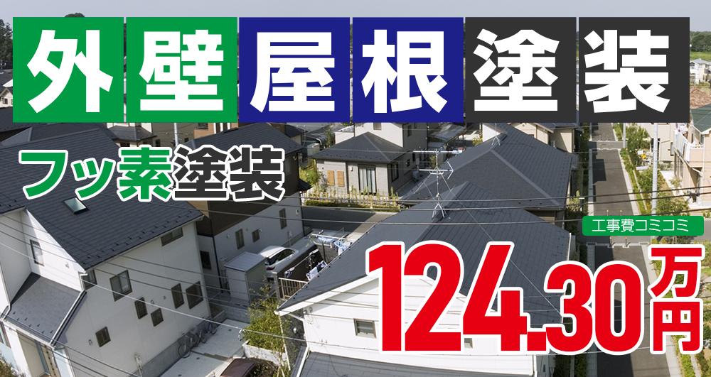 お得な外壁屋根塗装Wパック塗装 1243000万円